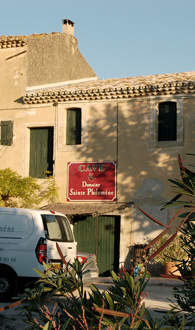 Producteur de vins